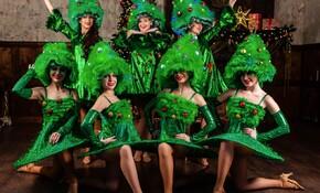 фото шоу-балете «Созвездие» foto/131